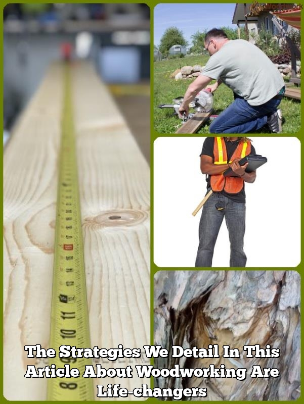 the strategies we detail in this article about woodworking are life changers1