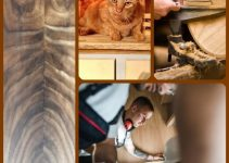 In A Hurry To Learn More Regarding Woodworking? These Tips Are For You